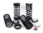 Range Rover P38 MKII Arnott Full Air To Coil Conversion Kit 1994-2002